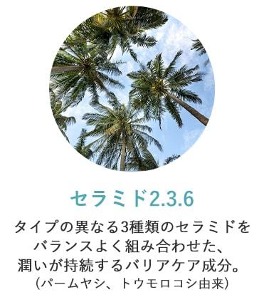 セラミド2.3.6