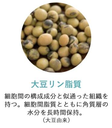 大豆リン脂質